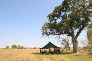 Botswana mobile safari outdoor tent