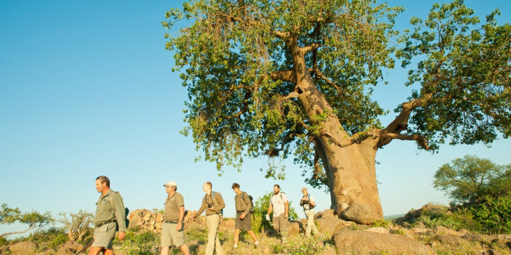 Ecotraining Baobab walk