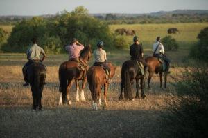 Northern Tuli Botswana horse riding group