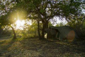 PRIDELANDS CAMP-Tent