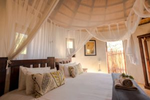 africa on foot room interior