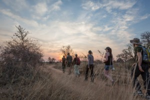 africa on foot walking safari