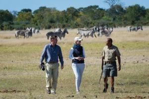 botswana photgraphic safari walking