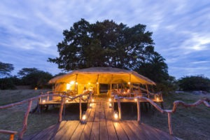 busanga plains deck night