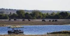 chobe game lodge boat