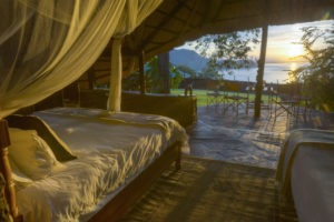 hornbill lodge kariba family view