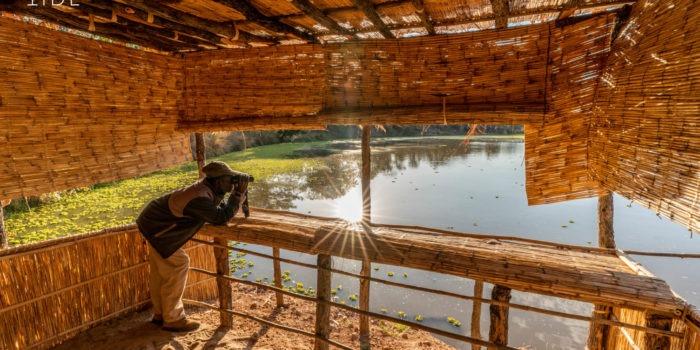 luwi camp hide