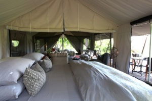 machaba camp interior tent