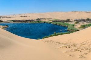 namibia Hoanib Skeleton Coast Camp Photographic safari