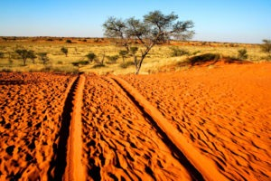 namibia kalahari landscape photography desert