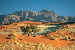 namibia namib rand landscape photo safari