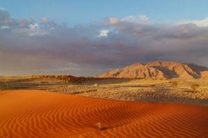 namibia namib rand photo safari