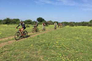 northern tuli botswana cycling safari flowers