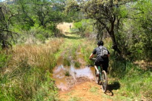 northern tuli botswana cycling safari off road