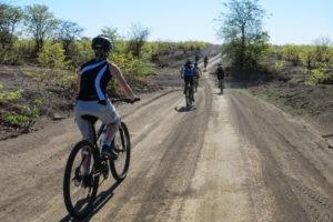 northern tuli botswana cycling safari riding along road