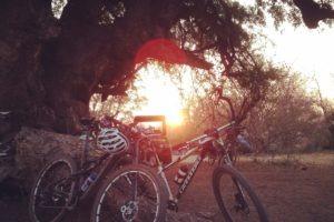 northern tuli botswana cycling safari sunset