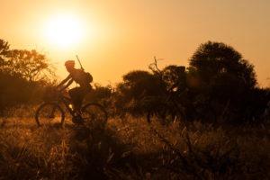 northern tuli botswana cycling safari sunset riding