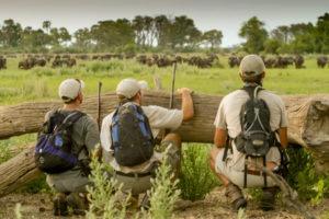 okavango delta bush skills training Chitabe