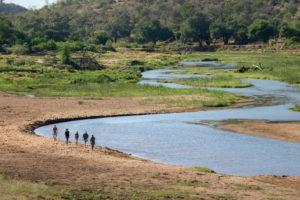 pafuri camp walking safari