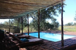 selinda spillway botswana camp