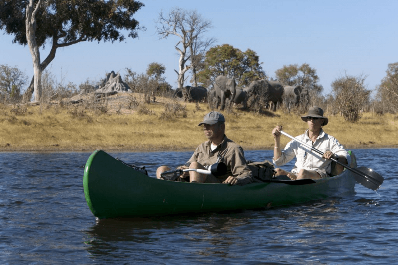 selinda spillway canoe safari elephant viewing