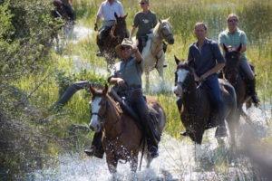 selinda spillway horse riding through water botswana adventure