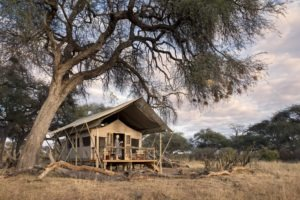 somalisa expeditions hwange tent outside