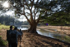 tuli botswana walking safari wlaking along river