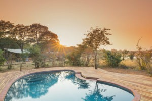verneys camp hwange pool