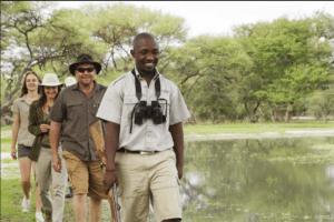 Botswana okavango delta walking through delta safari