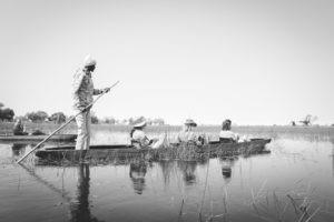 Botswana-Delta-Okwa-Guiding-Safari-Mokoro