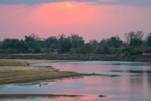 South-Luangwa-Pink-Sunset