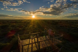 Dinaka Central Kalahari Botswana Landscape Viewing Deck