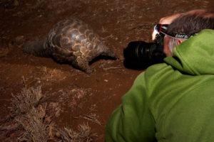 Greater kruger national park klaserie photography safari