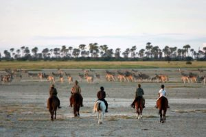 Makgadikgadi Botswana horse riding zebra migration