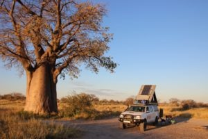 Makgadikgadi Pans Nxai Pans Camping Self Drive