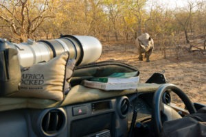 Makuleke Kruger National Park Game Drive Rhino Photography