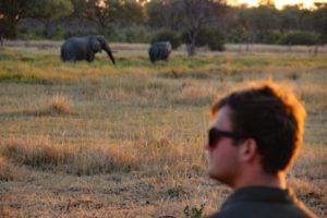 Northern Botswana Frank Khwai Elephant Big Five