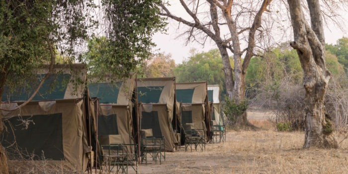 camp chitake mana pools tents