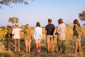 guests walking okavango delta