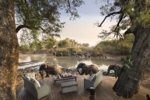 kanga camp mana pools elephants