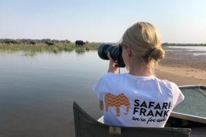 lower zambezi tusk and mane safari frank