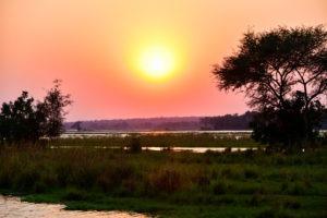 lower zambezi tusk and mane sunset zambezi