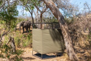 lowveld trails timbavati shower elephant