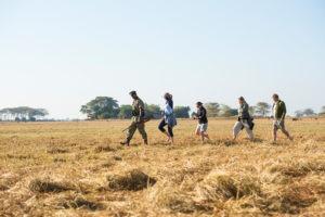 west zambia busanga kafue walking safari