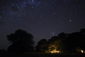 zambia luangwa valley Luwi evening stars