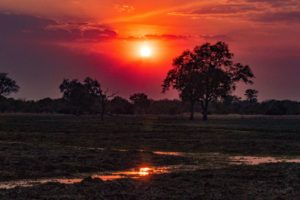 zambia luangwa valley amazing african sunset