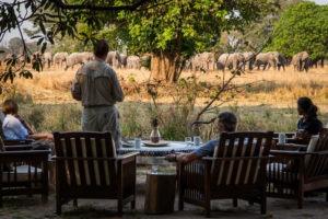zambia luangwa valley breakfast with elephants