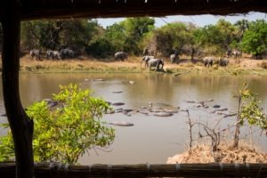zambia luangwa valley hidden photography hides
