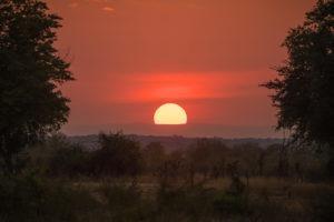 zambia luangwa valley kafunta sunset